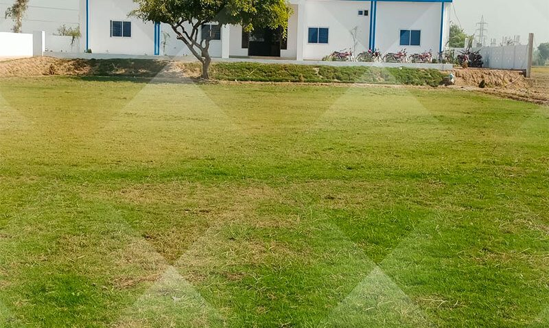 Sir Muhammad Bashir Hafizabad Campus ( Being Renovated )